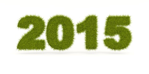 Green 2015 New Year sign