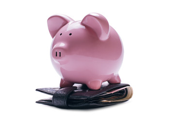 Pink piggy bank on a wallet with banknotes