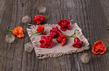 Exotic bell shaped capsicum on a burlap cloth