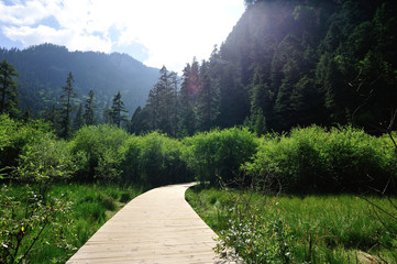 hiking trail on jiuzhaigou national park in china