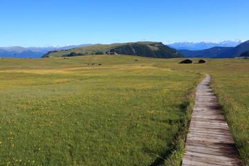 sentiero sull'Alpe di Siusin