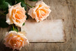 canvas print picture - Delicate cream roses on wooden table