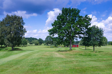Swedish typical golf course