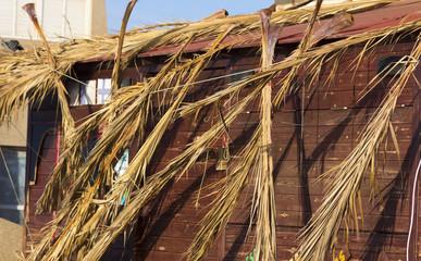 log cabin destroyed after a tornado