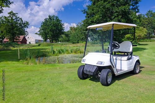 Staande foto Scandinavië Golf car on Swedish golf course