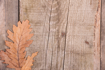 Autumn background of leaves over wooden surface