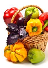 Sweet pepper, aubergine, chili pepper in the basket