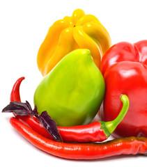 Sweet pepper, chili pepper and basil