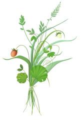 Букет из полевых цветов и трав