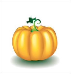 The tasty pumpkin