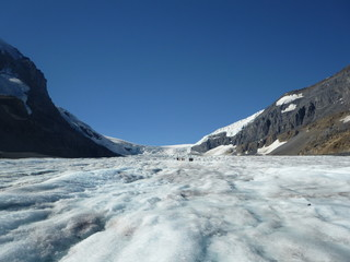 Columbia Icefield - Gletscher in Kanada