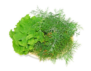 Plate with lettuce and dill isolated