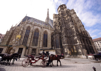 St Stephan Cathedral, Vienna, Austria and horse carriage