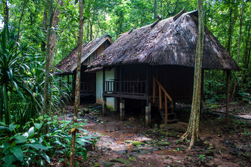 Bungalow in a forest, Laos