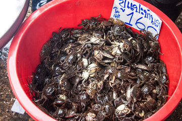Crabs for sale at fresh food market in Samut Sakhon,Thailand.