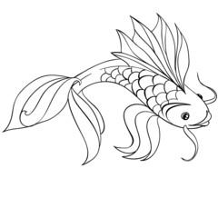 Контурная рыба карп