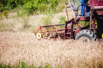 industrial harvesting combine harvesting crops of wheat