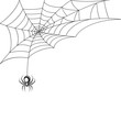 Spider web wallpaper - 68727581