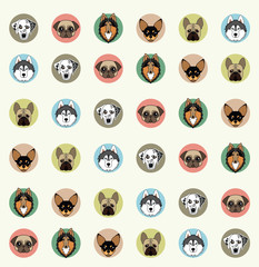 wallpaper with pets of different breeds