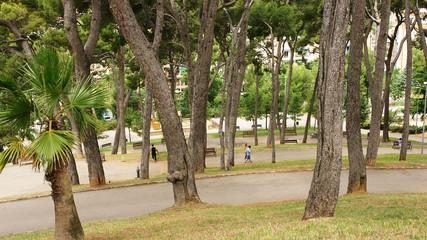 Bosque en el parque del Turó de la Peira, Barcelona