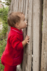 Ребёнок подглядывает за забор