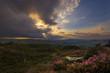 Norland moor sunset