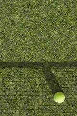 One tennis ball is on the green grass near the net