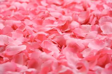 Petali rosa finti