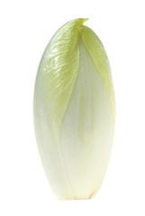 endivia