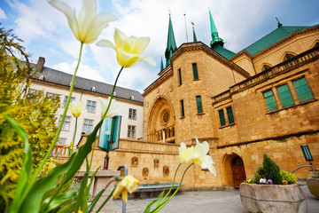White flowers, Notre-Dame Cathedral, Luxembourg