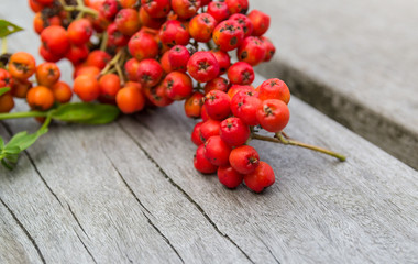 Rowanberry or ashberry on a wooden board