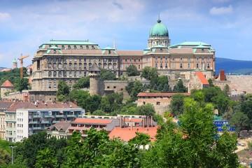 Hungary - Budapest castle cityscape