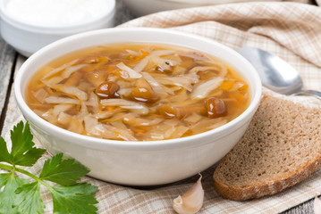 traditional Russian cabbage soup (shchi) with mushrooms in bowl