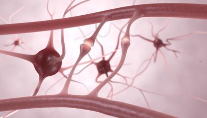 Neuronen, Nervenzellen, Synapsen - 3D Illustration