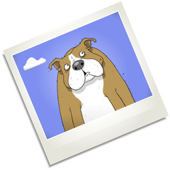FUnny cartoon dog character on photograph