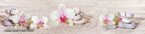 Panorama with orchids and zen stones in the sand - 68755304