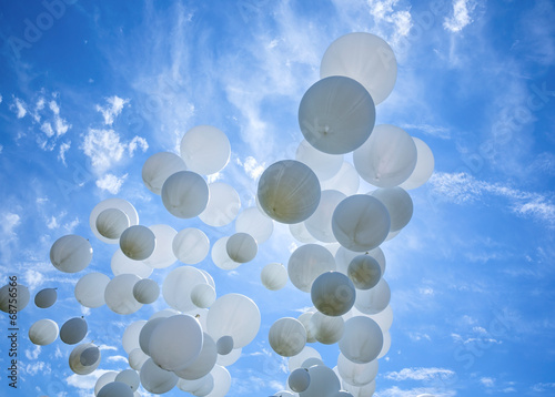 White balloons on the blue sky - 68756566