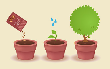 watering a plant concept