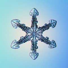 natural crystal snowflake macro