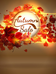 Autumn Sale background with copyspace. plus EPS10