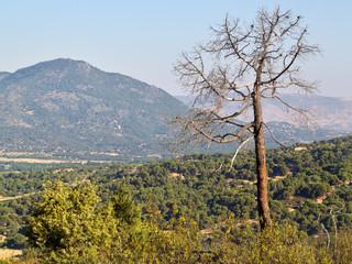 Pico Guisando. Sierra de Gredos