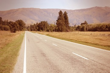 Road in New Zealand. Cross processed filtered tone.