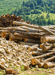 Raw materials: wood logs and river stones for construction needs