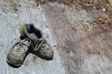 Old Worn Out Yard Shoes (Work Shoes) on Wood