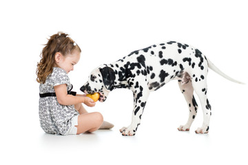 happy baby girl feeding dog isolated on white