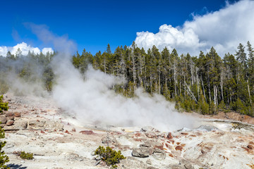 The highest geyser in Yellowstone National Park, Utah, USA