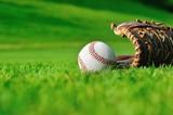 Fototapety Outdoor baseball