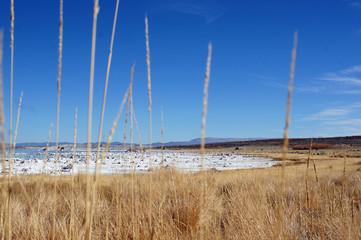 Ein See mit weißen Steinbrocken und gelbem Gras