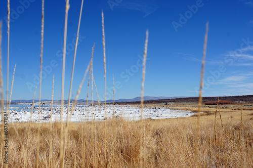 canvas print picture Ein See mit weißen Steinbrocken und gelbem Gras