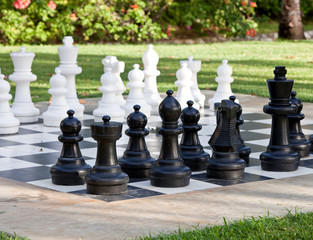 Figures for game in chess on the nature..